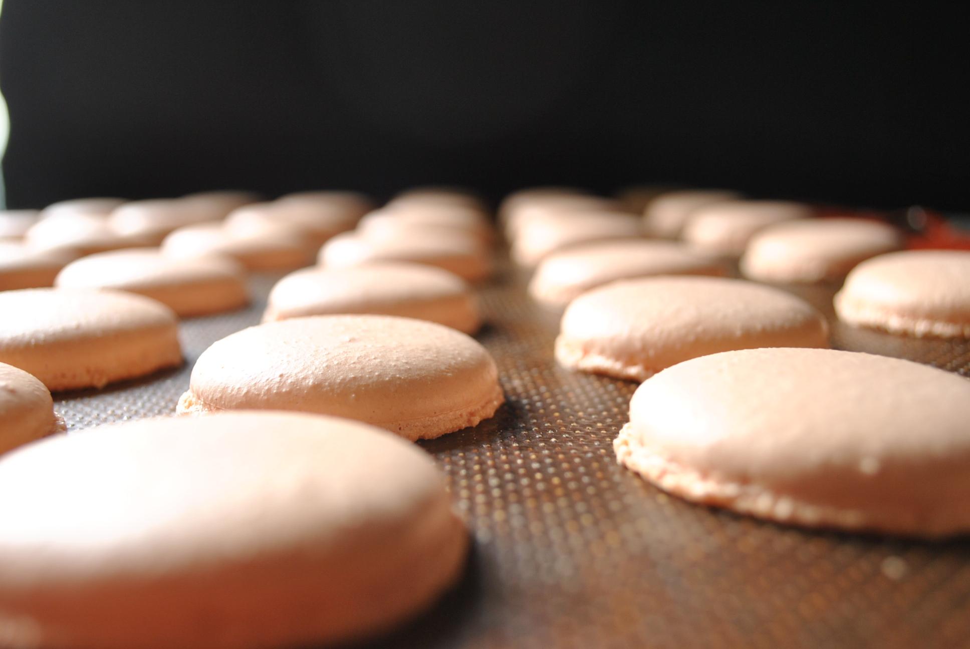 Macarons appena sfornati
