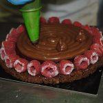 Torta vegana al cioccolato e lamponi